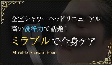 全室シャワーヘッドリニューアル!ミラブルで全身ケア